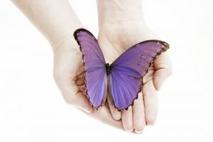 The Virtue of Vulnerability by Carolyn Parr